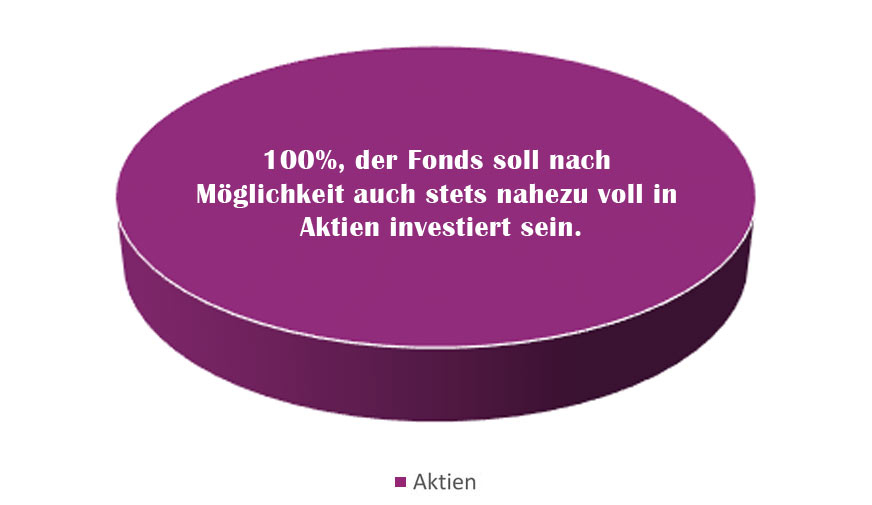 Ziel-Quoten der Asset Allocation EB Ökoaktienfonds